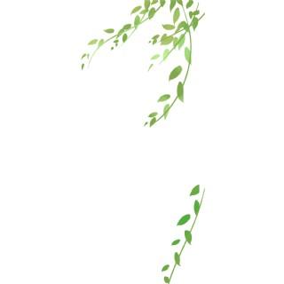 綠色葉子唯美被風吹的綠葉唯美清新自然免扣png