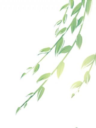 春夏大樹樹葉綠色手繪插畫免扣元素