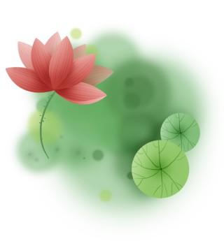 红色莲花清新文字框