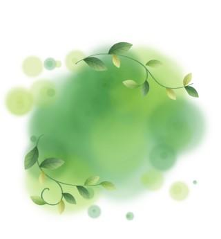夏季淡彩绿色植物水墨文字框