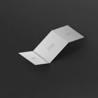 空白三折页样机